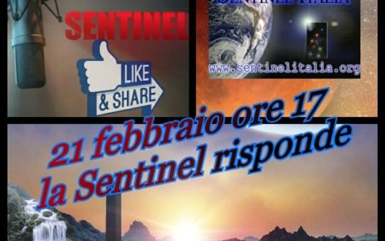 La Sentinel risponde